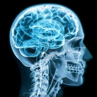Oregon brain injury lawyer